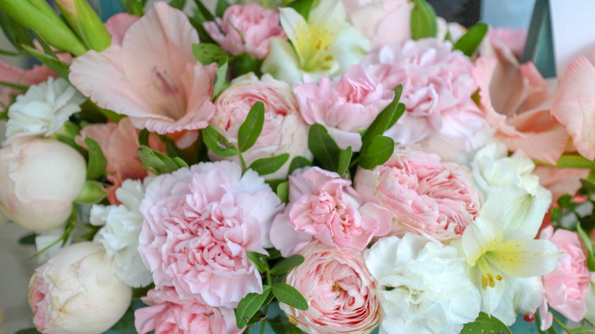 остые советы по уходами за цветами