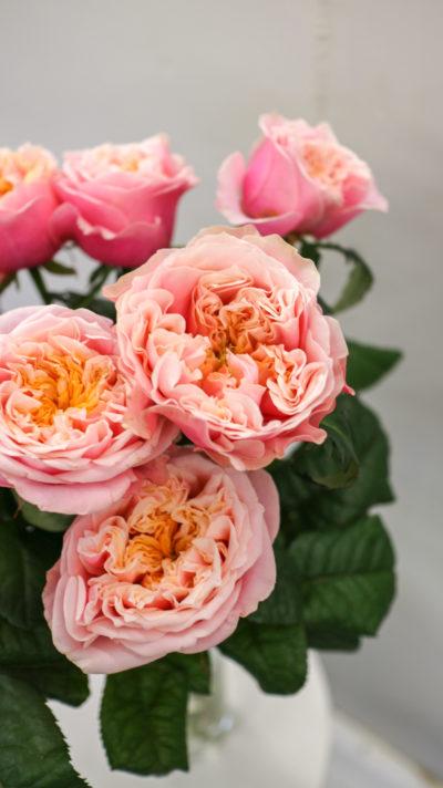 Купить розы в Уфе
