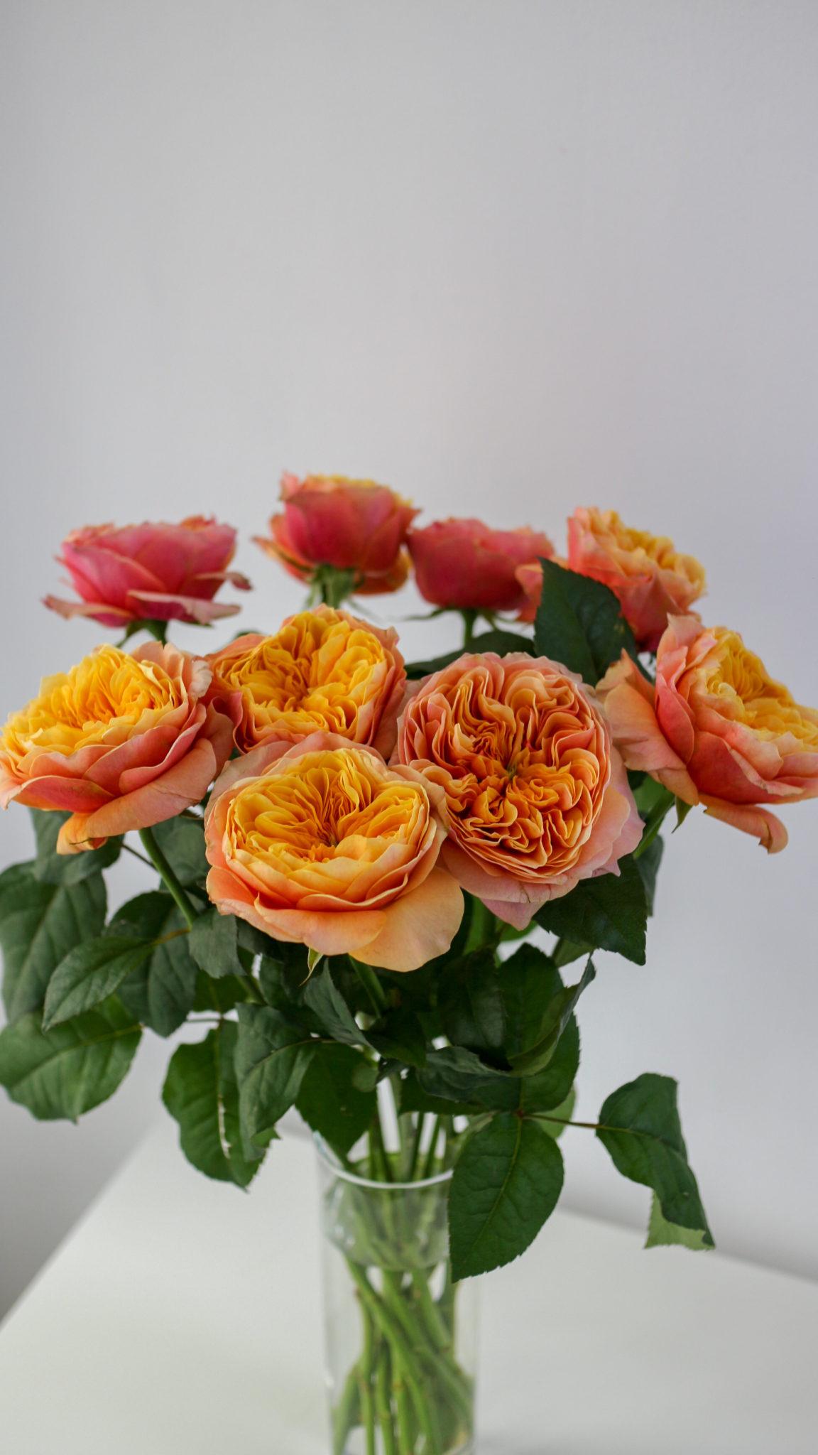Пионовидные розы Уфа